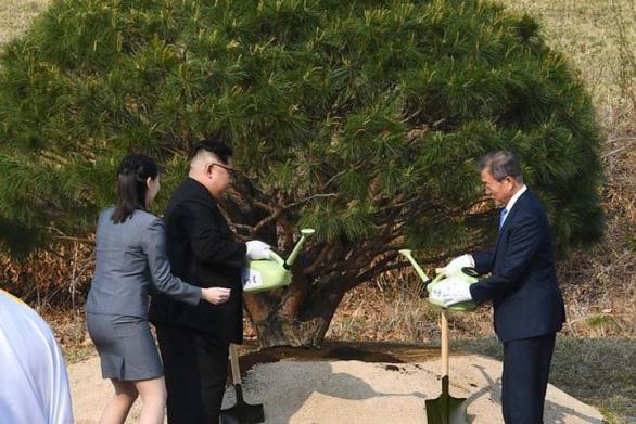 Bí ẩn cô em gái của ông Kim Jong Un - Ảnh 10.