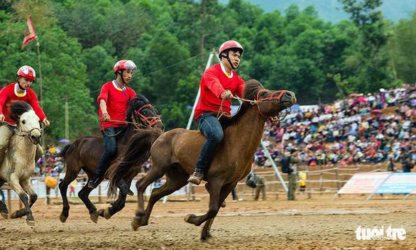 Tỉ USD đổ vào trường đua ngựa, đua chó, đua F1 - Ảnh 1.