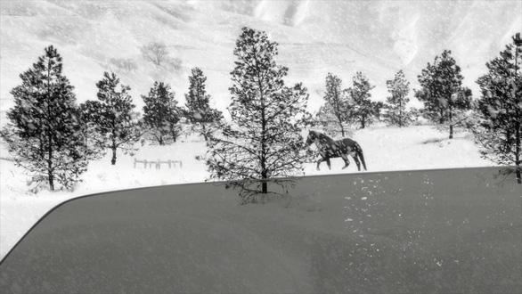 24 Frames - Lời giã biệt đầy chất thơ của Abbas Kiarostami - Ảnh 5.