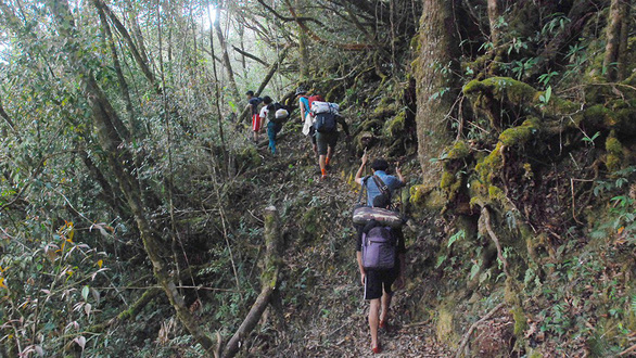 Tây Giang gìn giữ rừng xanh - Kỳ 5: Đội kiểm lâm làng - Ảnh 3.