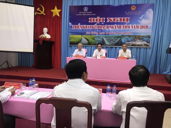Chi phí nuôi tôm của Việt Nam thuộc hàng cao nhất thế giới - Ảnh 1.