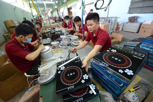 Doanh nghiệp tư nhân Việt Nam chậm lớn và khó lớn - Ảnh 1.