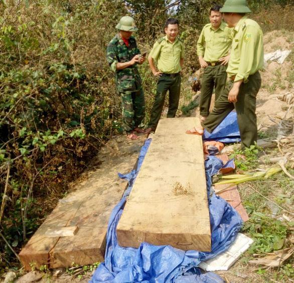 Kiểm điểm trách nhiệm vụ phá rừng ở Phong Nha - Kẻ Bàng - Ảnh 1.
