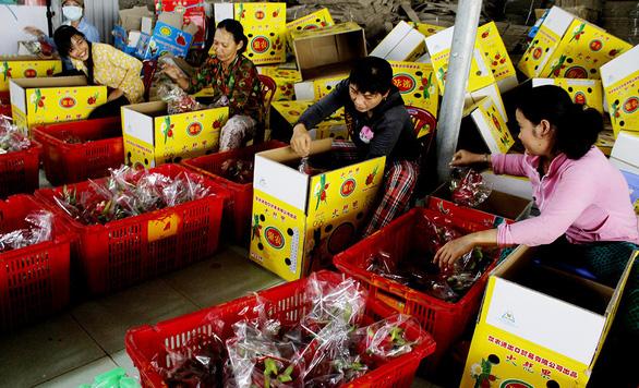 Trung Quốc tăng mua, nhiều loại trái cây tăng giá mạnh - Ảnh 1.