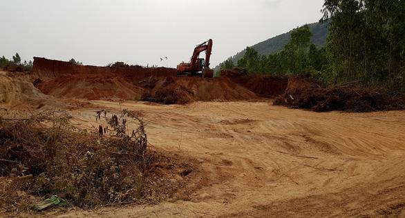Bình Định: doanh nghiệp đào đất trồng rừng san lấp công trình - Ảnh 3.