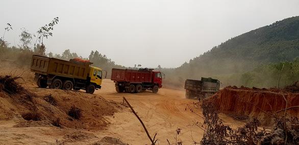 Bình Định: doanh nghiệp đào đất trồng rừng san lấp công trình - Ảnh 2.