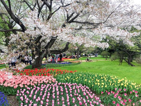 Tour tháng 5 tham dự sự kiện trọng đại của Nhật Bản - Ảnh 4.