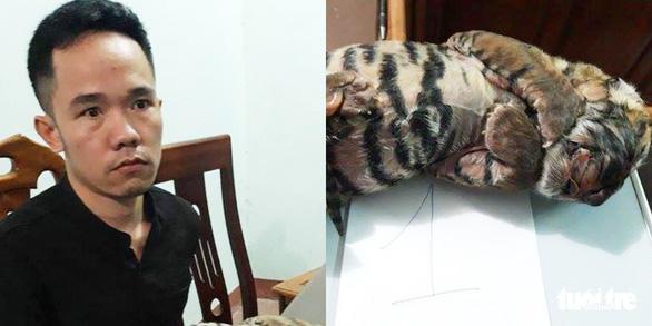Bắt nghi phạm bán hai con hổ đông lạnh để ngâm rượu - Ảnh 1.