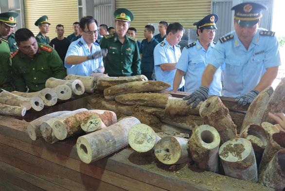 Bắt giữ 9,1 tấn nghi là ngà voi ở cảng Tiên Sa - Ảnh 1.