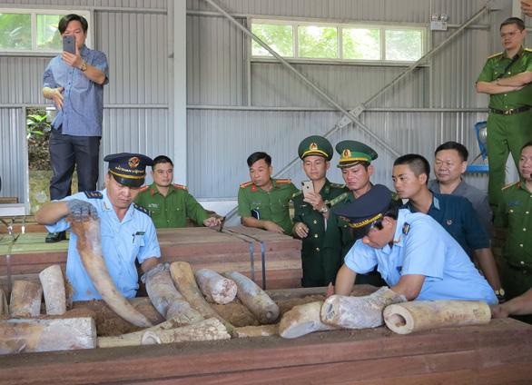 Bắt giữ 9,1 tấn nghi là ngà voi ở cảng Tiên Sa - Ảnh 2.