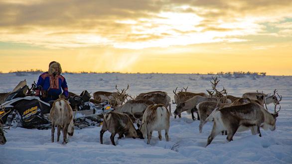 Homestay với người Sami ở Bắc Âu - Ảnh 1.