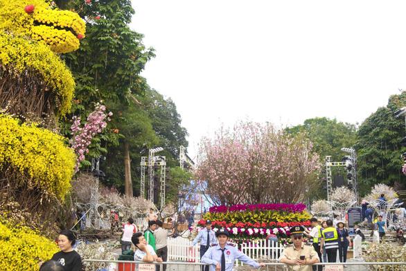 20.000 cành hoa anh đào khoe sắc tại vườn hoa Lý Thái Tổ - Ảnh 2.