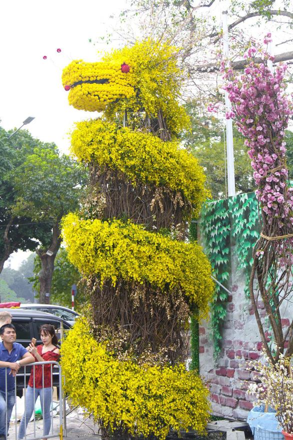 20.000 cành hoa anh đào khoe sắc tại vườn hoa Lý Thái Tổ - Ảnh 4.