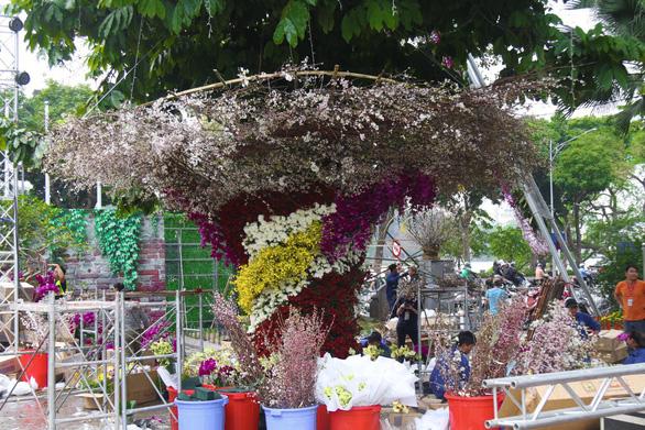 20.000 cành hoa anh đào khoe sắc tại vườn hoa Lý Thái Tổ - Ảnh 3.