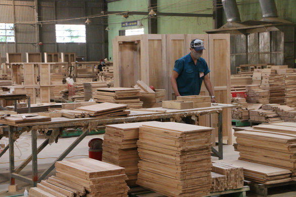 Thủ tướng ra chỉ thị để phát triển ngành gỗ hàng đầu thế giới - Ảnh 1.