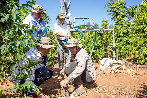 Bayer và các bên liên quan ra mắt giải pháp trồng lại cà phê - Ảnh 3.