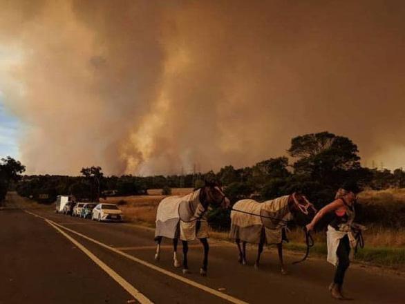 Cháy kinh hoàng ở Úc - Ảnh 1.