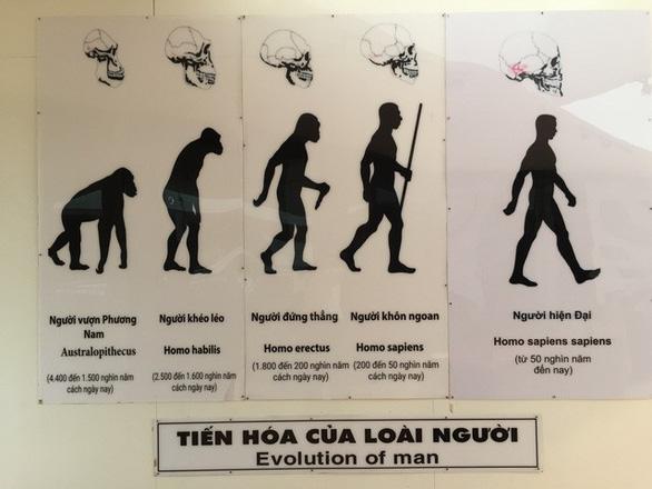 Lịch sử người Việt sẽ bắt đầu từ... An Khê? - Ảnh 6.