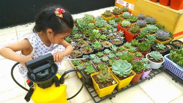 Hội mê trồng cây, họp chợ tặng nhau miễn phí - Ảnh 3.