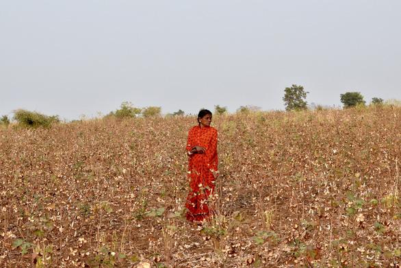 Nông dân trong cuộc bầu cử Ấn Độ - Ảnh 1.