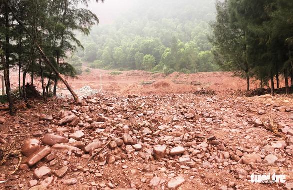 Dân 'vây' dự án nuôi tôm phá cả rừng phòng hộ ven biển - Ảnh 7.