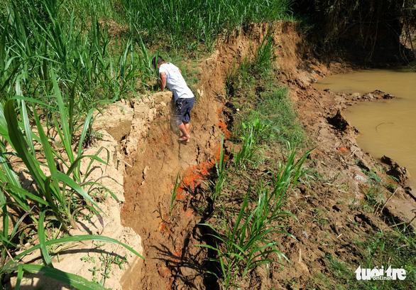 Rút 3 giấy phép khai thác cát do làm hư hại thánh địa Cát Tiên - Ảnh 3.