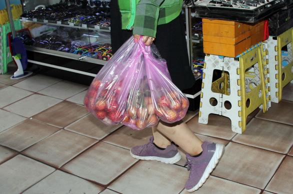 TP.HCM tặng túi tái chế cho người dân trong Ngày làm sạch rác thải nhựa - Ảnh 2.