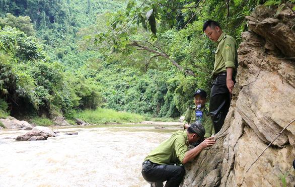 Tây Giang gìn giữ rừng xanh - Kỳ 4: Biệt đội rừng lim - Ảnh 1.