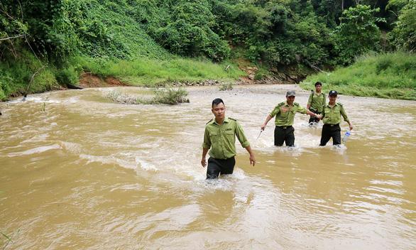 Tây Giang gìn giữ rừng xanh - Kỳ 4: Biệt đội rừng lim - Ảnh 3.