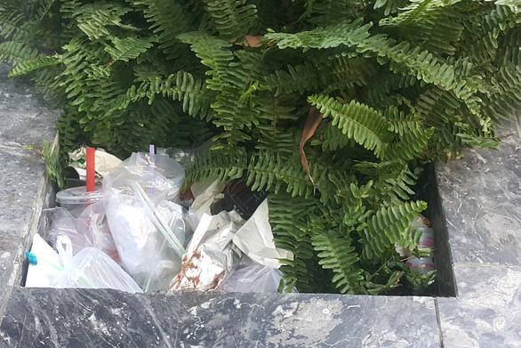 Giảm dùng đồ nhựa đi, chúng ta nợ môi trường quá nhiều rồi - Ảnh 3.