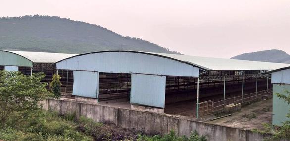 Thẩm định giá trại bò liên quan đến cha con ông Trần Bắc Hà - Ảnh 1.