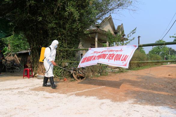 Thêm một ổ dịch tả heo châu Phi ở Thừa Thiên - Huế - Ảnh 1.
