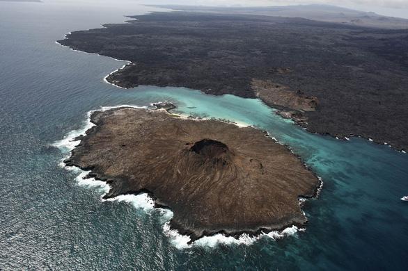 Quần đảo thế giới khác với những sinh vật không nơi đâu có - Ảnh 1.