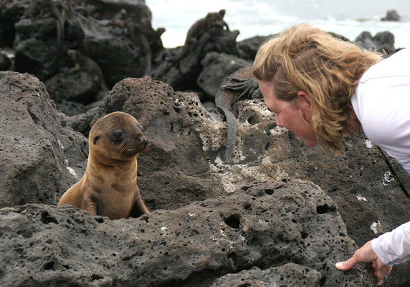 Quần đảo thế giới khác với những sinh vật không nơi đâu có - Ảnh 11.