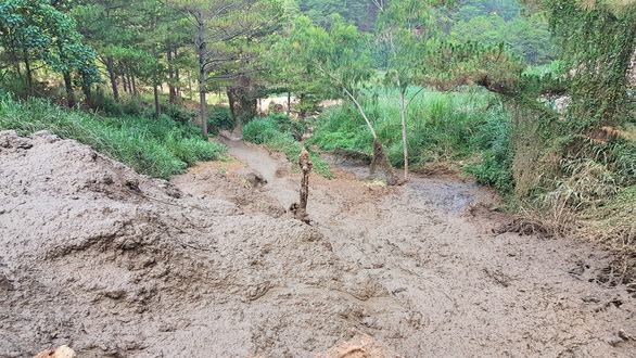 Hàng trăm khối bùn nạo vét hồ Xuân Hương tràn xuống, suối Prenn đục ngầu - Ảnh 1.