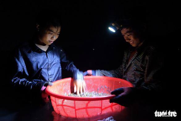 Trắng đêm lặn mò vẹm đất ở đầm Thủy Triều - Ảnh 7.