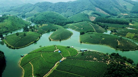 Saigontourist cam kết hỗ trợ phát triển du lịch Nghệ An - Ảnh 3.