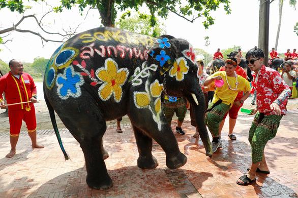 Người Thái chơi đùa với voi, đại chiến súng nước dịp Tết Songkran - Ảnh 3.
