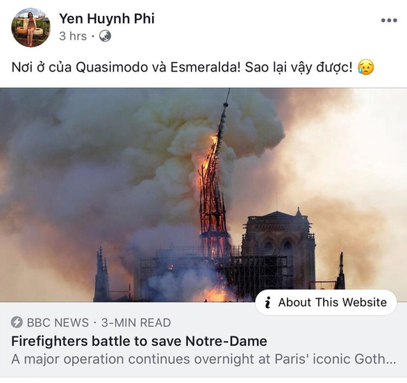 Nhà thờ Đức Bà Paris bốc cháy, người Việt bàng hoàng chia sẻ kỷ niệm - Ảnh 10.