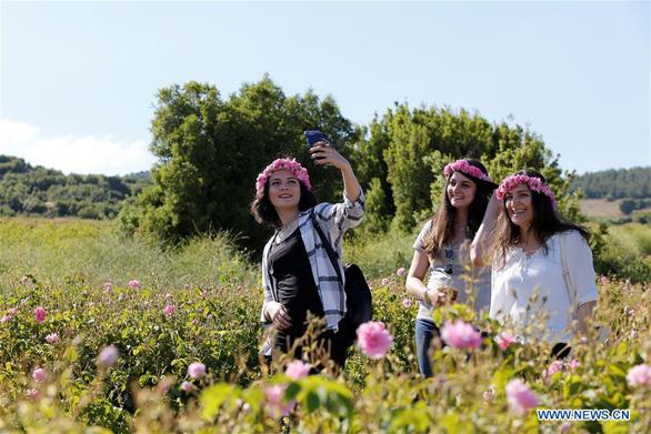 Thành phố thơm nức hương hoa hồng miền Địa Trung Hải - Ảnh 2.