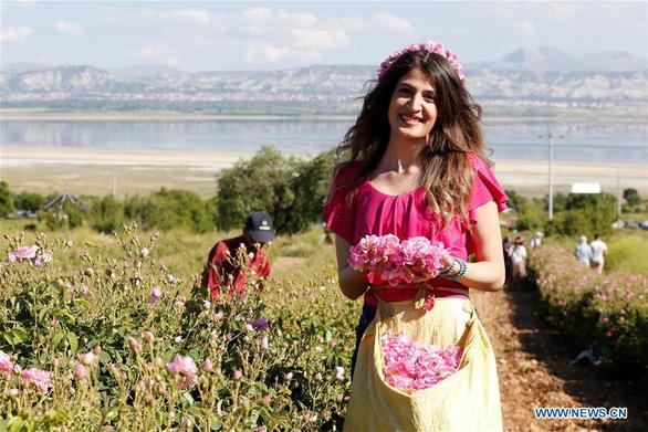 Thành phố thơm nức hương hoa hồng miền Địa Trung Hải - Ảnh 6.