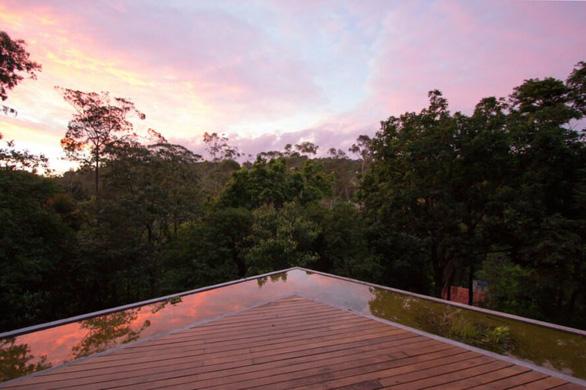 """Nhà kính """"lánh đời"""" của vị học giả giữa rừng nhiệt đới Brazil - Ảnh 2."""
