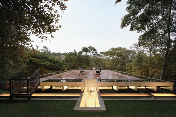 """Nhà kính """"lánh đời"""" của vị học giả giữa rừng nhiệt đới Brazil - Ảnh 1."""