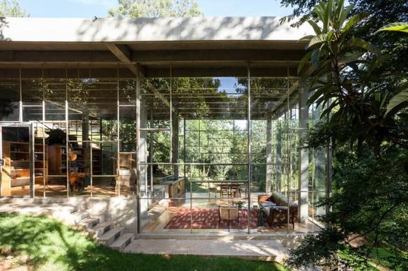"""Nhà kính """"lánh đời"""" của vị học giả giữa rừng nhiệt đới Brazil - Ảnh 3."""