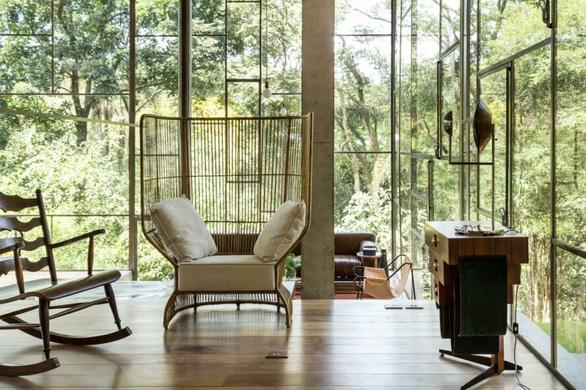 """Nhà kính """"lánh đời"""" của vị học giả giữa rừng nhiệt đới Brazil - Ảnh 5."""