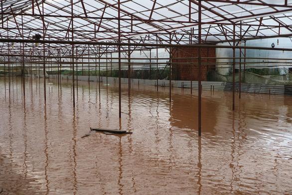 Chiều 20-4, Đà Lạt mưa lớn kèm mưa đá, nhiều nơi ngập nặng - Ảnh 5.