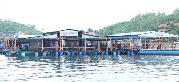 Khánh Hòa cấm tàu ra biển nếu du khách không mặc áo phao - Ảnh 2.
