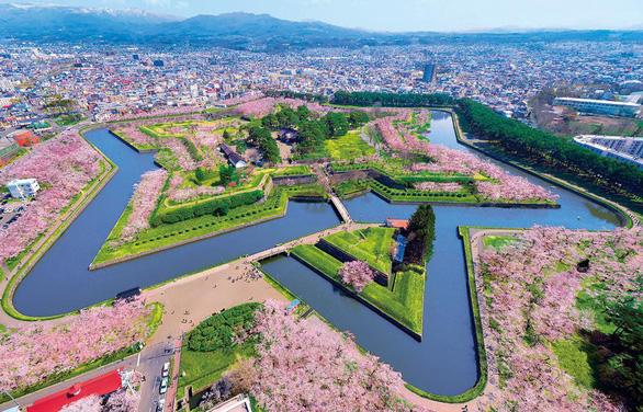 Tuyệt sắc hoa anh đào giữa đất trời Hokkaido Nhật Bản - Ảnh 1.