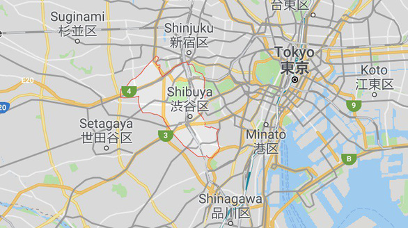 Sầm uất Shibuya - Ảnh 8.
