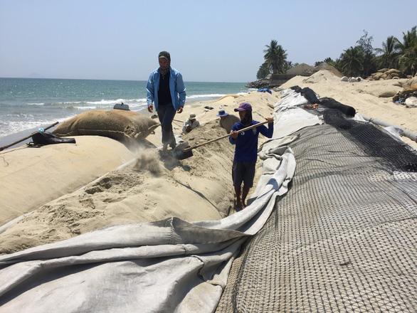 Quảng Nam đề xuất bố trí 700 tỉ đồng ngăn chặn sạt lở biển Cửa Đại - Ảnh 4.